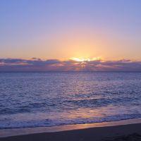Morning sun, Палм-Бич