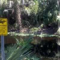 Veterans Park Nature Preserve, Naples, FL, Палм-Ривер