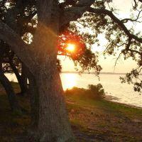 Florida, USA Gez Dünyayı,özüne dön!Aydınlan ve Aydınlat!!!, Панама-Сити