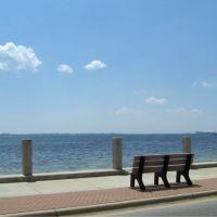 Nice View, Панама-Сити