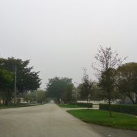 Foggy Morning at NW 98th Ave, Пемброк-Пайнс