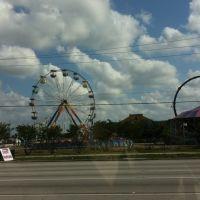 La Feria, Пемброк-Пайнс