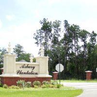 Asbury Plantation Neighborhood in Green Cove Springs, Пенни-Фармс