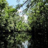 Peters Creek View 17, Пенни-Фармс
