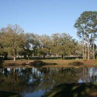 Duck Pond, Перри