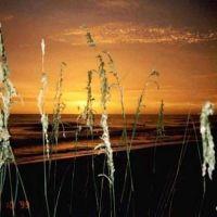 Sea Oats Sunset, Редингтон-Бич