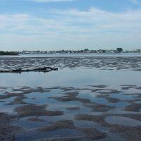 Nessy in the Bayou, Редингтон-Бич