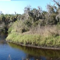 Little Manatee River Bend, Рускин