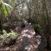 Little Manatee River State Park hiking trail - bridge, Рускин
