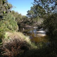 Little Manatee River State Park hiking trail - Canoes on the Little Manatee River, Рускин