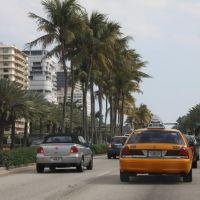 Miami Beach, Санни-Айлс
