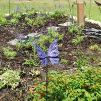 Magnolia Park, Apopka Fl, 2007-04-29, Саут-Апопка