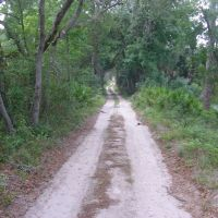 Wekiva State Park Trail, Саут-Апопка
