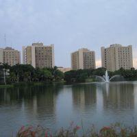 University of Miami, Саут-Майами