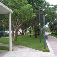 MIAMI UNIVERSITY AREA GARDEN, Саут-Майами