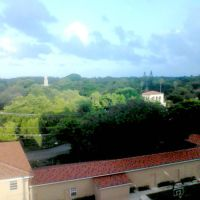 Landscape looking SE from Coral Gables, FL (2013), Саут-Майами