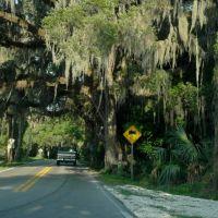Fort Dade Road, Саут-Майами-Хейгтс