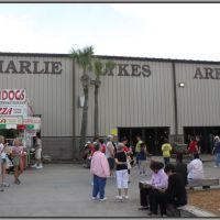 Charlie Lykes Arena Complex, Сеффнер