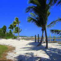 Tavernier, Fl. Keys  Shoreline, Тавернир
