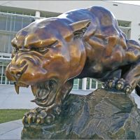Panther Sculpture in FIU, Тамайами