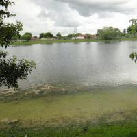Miami Pequeño Lago En Zona Recidencial, Тамайами