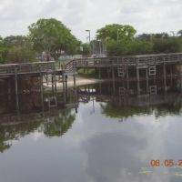Boat Launch, Riverside Park, Coral Springs FL, Тамарак