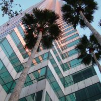 looking toward the sky, BofA building, Tampa (2-2009), Тампа