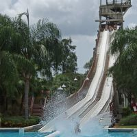 Adventure Island slide Gulf Scream, Темпл-Террас