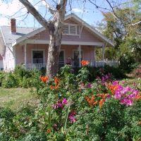 bungalow in bloom, Titusville (2-24-2011), Титусвилл