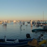 Riverromp regatta @ Edison Sailing Center, Форт-Майерс