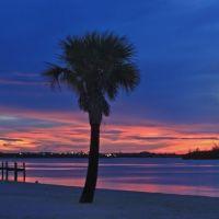 palm tree sunset, Форт-Пирс