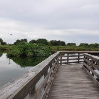 Walkway through the Wakodahatchee Wetlands - H&M, Хай-Пойнт