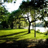 Epps Park - Seminole Heights Tampa, FL, Хамптон