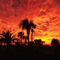 Florida Sunset, Шарлотт-Харбор