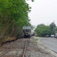2012, Winter Haven, FL -Avenue R SW rails, Элоис
