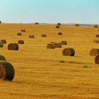 Impressioni dalla I-90, South Dakota, Ватертаун