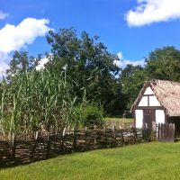 Crop Garden, Авондейл