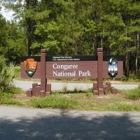 Congaree National Park Entrance, Вест-Колумбиа