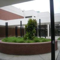 The Magnolia!, Вудфилд