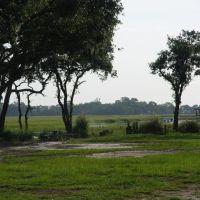Myers Backyeard view of Ellis Creek, Джеймс-Айленд