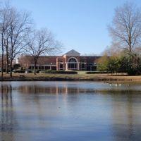 Ducks and Pond at PC, Клинтон