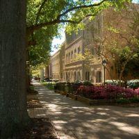 The University of South Carolinas Horseshoe, Колумбиа