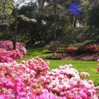 Glencairn Gardens, Rock Hill, Рок-Хилл
