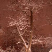 Snow in Sumter, Самтер