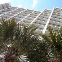 Seacrest Hotel Tower, Хемингуэй
