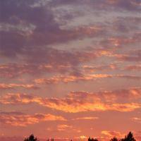 Sky and Pines, Хемингуэй