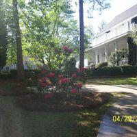 Morse Wragg Home, Чарльстон