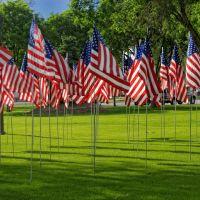 American flags, Delta, Utah, Делта