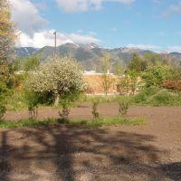 Garden Spot, Логан
