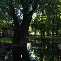 Willow Park - Logan, Utah, Логан